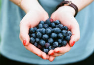 Blueberries can help reduce anxiety